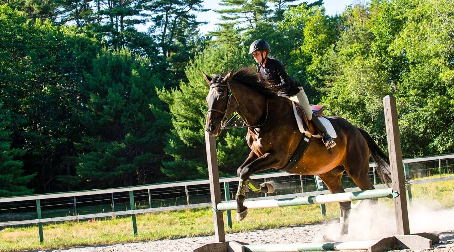 a girl and her horse midway through a jump