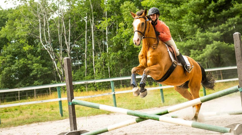 a girl riding a horse as it jumps over an obstacle