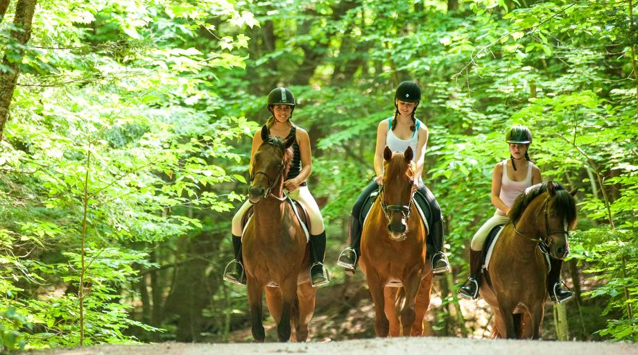three girls riding horses together